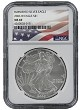 2006 W Burnished Silver Eagle NGC MS69 - Flag Label