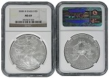 2008 W Burnished Silver Eagle NGC MS69 - Brown Label
