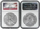 2013 (w) 1oz Struck at West Point Silver Eagle NGC MS70 - Flag Label