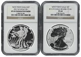 2013 W Silver Eagle 2 Coin Silver Set (S40) NGC PF69 SP69 Brown Label