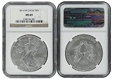 2014 W Burnished Silver Eagle NGC MS69 - Brown Label