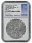 2015 W Burnished Silver Eagle From Annual Dollar Set NGC MS70 First Day Issue