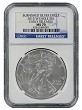 2015 W Burnished Silver Eagle NGC MS70 - Early Releases - Blue Label