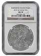 2015 W Burnished Silver Eagle NGC MS70 - Brown Label