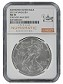 2015 W Burnished Silver Eagle NGC MS70 - Chicago ANA Releases