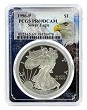 1996 P 1oz Silver Eagle Proof PCGS PR69 DCAM - Eagle Frame