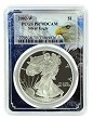2002 W 1oz Silver Eagle Proof PCGS PR70 DCAM - Eagle Picture Frame