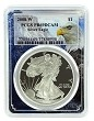 2008 W 1oz Silver Eagle Proof PCGS PR69 DCAM - Eagle Picture Frame