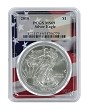 2010 1oz Silver Eagle PCGS MS69 - Flag Frame