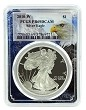 2010 W 1oz Silver Eagle Proof PCGS PR69 DCAM - Eagle Picture Frame