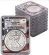 2010 thru 2018 Silver Eagle 9 Coin Set PCGS MS70 Flag Frame
