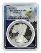 2011 W 1oz Silver Eagle Proof PCGS PR69 DCAM - Eagle Picture Frame