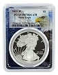 2011 W 1oz Silver Eagle Proof PCGS PR70 DCAM - Eagle Picture Frame