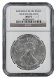 2014 W Burnished Silver Eagle NGC MS70 - Brown Label