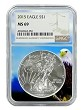 2015 1oz Silver American Eagle NGC MS69 - Eagle Core