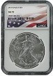 2015 1oz Silver American Eagle NGC MS70 - Flag Label
