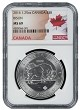 2016 1.25 oz Silver Canadian Bison NGC MS69 - Flag Label