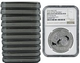 2016 Niue by New Zealand Mint 1oz Silver Year Of Monkey NGC - Brilliant Uncirculated - 10 Pack