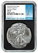 2018 W Burnished Silver Eagle NGC MS70 -  Black Core - First Day Issue Label