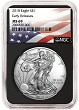 2018 1oz Silver American Eagle NGC MS69 - Early Releases - Flag Label - Black Core - Presale