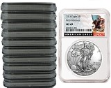 2018 1oz Silver American Eagle NGC MS69 - Early Releases - Black Label - 10 Pack - Presale