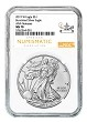 2019 W Burnished Silver Eagle NGC MS70 - Chicago ANA Releases