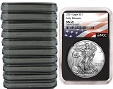 2019 1oz Silver American Eagle NGC MS69 - Early Releases - Flag Label - Black Core - 10 Pack - PRESALE