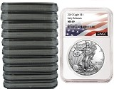 2019 1oz Silver American Eagle NGC MS69 - Early Releases - Flag Label - White Core - 10 Pack - PRESALE