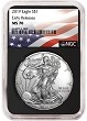 2019 1oz Silver American Eagle NGC MS70 - Early Releases - Flag Label - Black Core