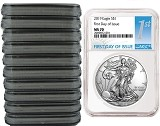 2019 1oz Silver American Eagle NGC MS70 - First Day Issue - White Core - 10 Pack - PRESALE