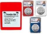 2020 W Burnished Silver Eagle NGC MS70 - First Day Issue - Red White and Blue Core Set - Trump Label