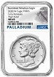 2020 W Burnished High Relief Palladium Eagle NGC MS69 - Early Releases - Presale