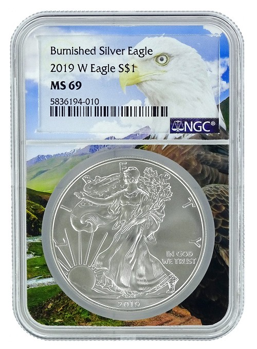2019 W Burnished Silver Eagle NGC MS69 - Eagle Core