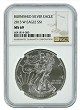 2013 1oz Silver American Eagle NGC MS69 - Brown Label