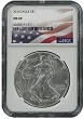 2015 1oz Silver American Eagle NGC MS69 - Flag Label