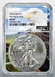 2020 1oz Silver Eagle NGC MS69 - First Day Issue - Eagle Core