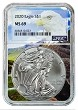 2020 1oz Silver American Eagle NGC MS69 - Eagle Core