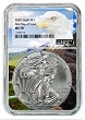 2020 1oz Silver Eagle NGC MS70 - First Day Issue - Eagle Core